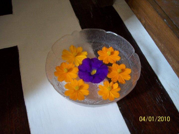 massage flower