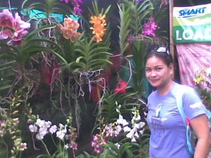 Orchids from CDO!