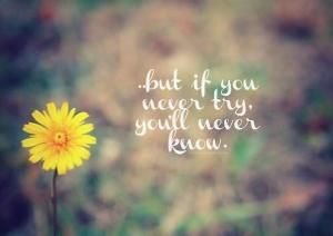 You will never know, if you never try...