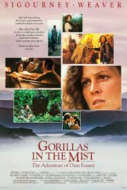 Source: http://www.impawards.com/1988/gorillas_in_the_mist_xlg.html