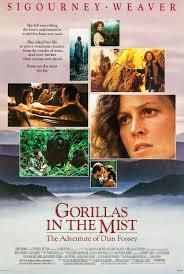 Source: http://www.impawards.com/1988/gorillas_in_the_mist_xlg.html