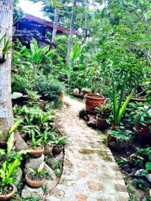 path tesoros
