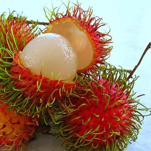 Photo courtesy of: http://top10philippines.blogspot.com/2009/07/top-10-tropical-fruits-in-philippines.html