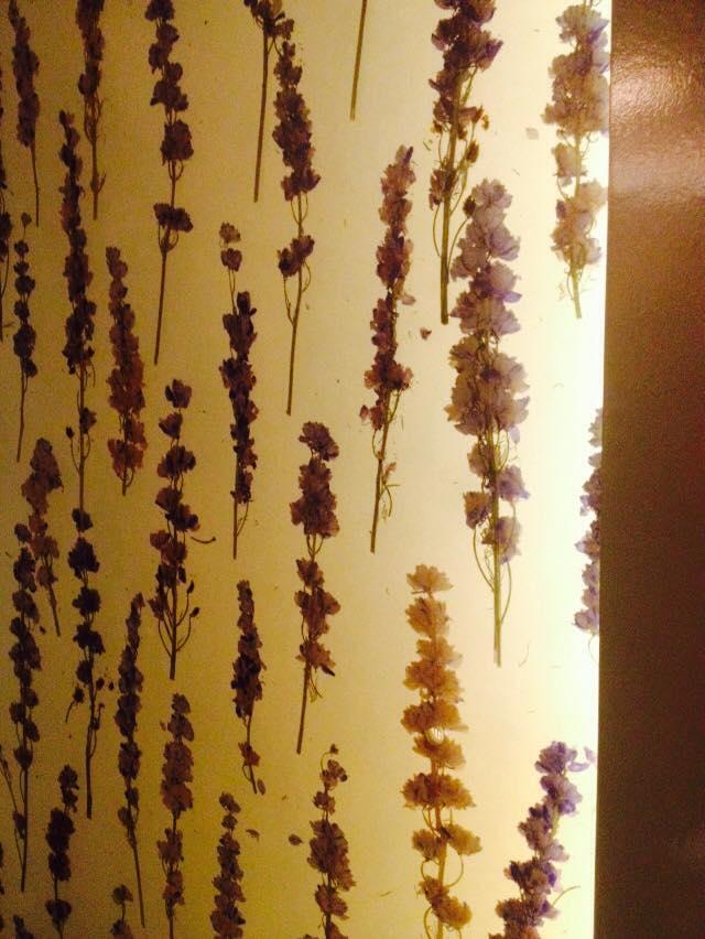 pressed lavenders