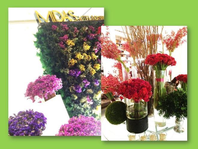 midas flowers